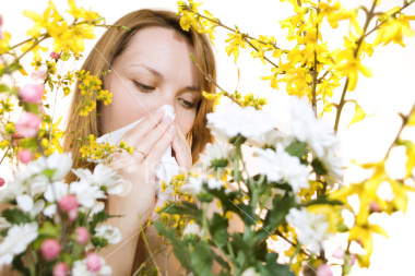 Natural Alternatives For Seasonal Allergies