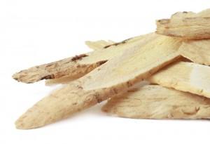 Astragalus-Root