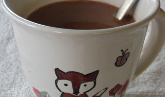 "Yummy Do It Yourself ""Healthier"" Instant Hot Chocolate Recipe"